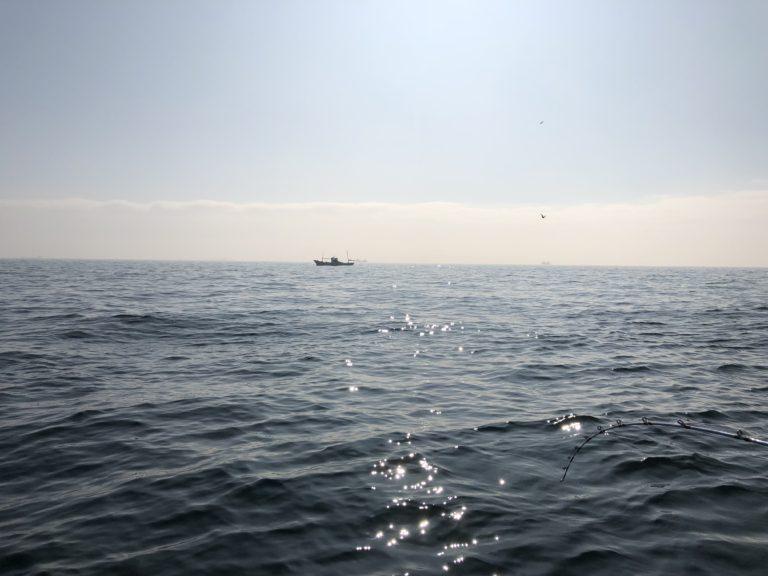 海釣り-アジ編